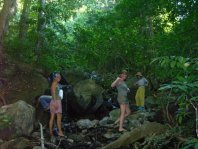 Excursions from Ankermi Happy Dive:  Walking in the jungle